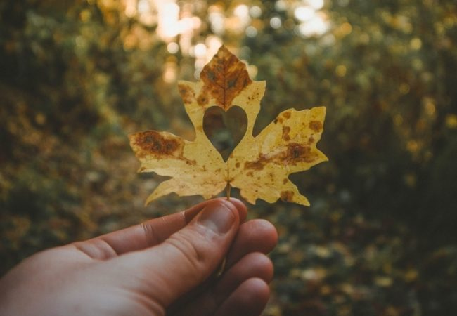 things to do this fall in okc, fall fun, autumn events