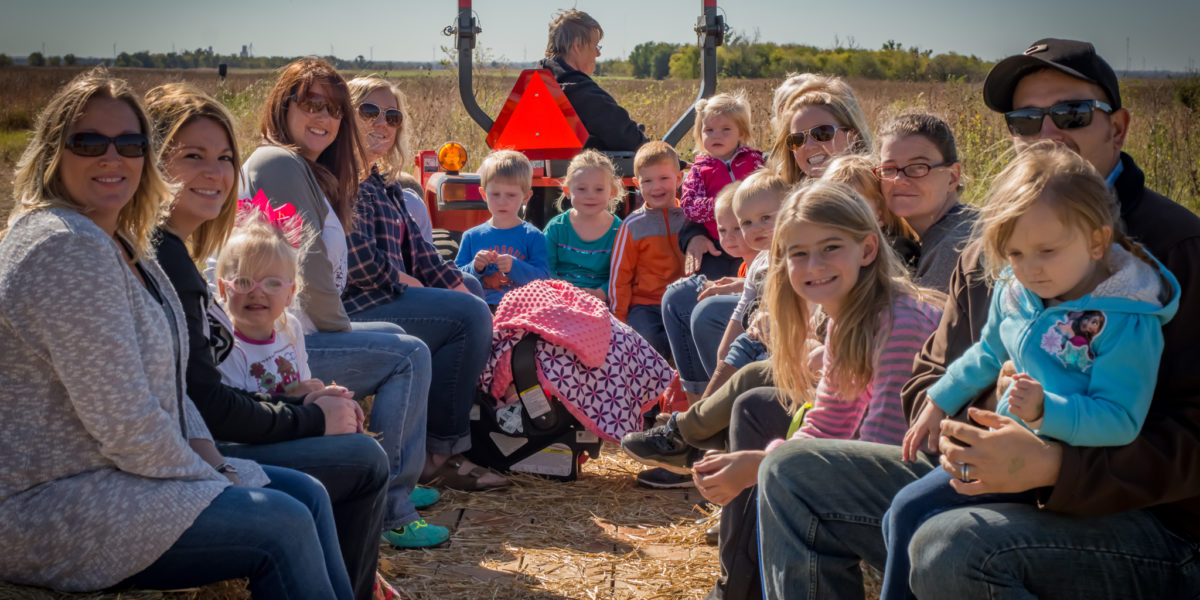 fall fun, pumpkin patch