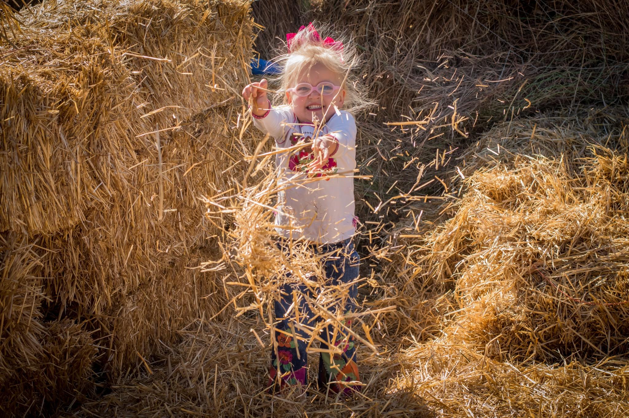 Halloween Mazes 2020 Oklahoma 2020 Pumpkin Patches & Farm Fun near OKC   MetroFamily Magazine
