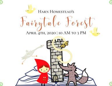 Harn Homestead's Fairytale Forest